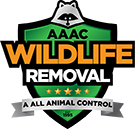 Frisco Wildlife Removal